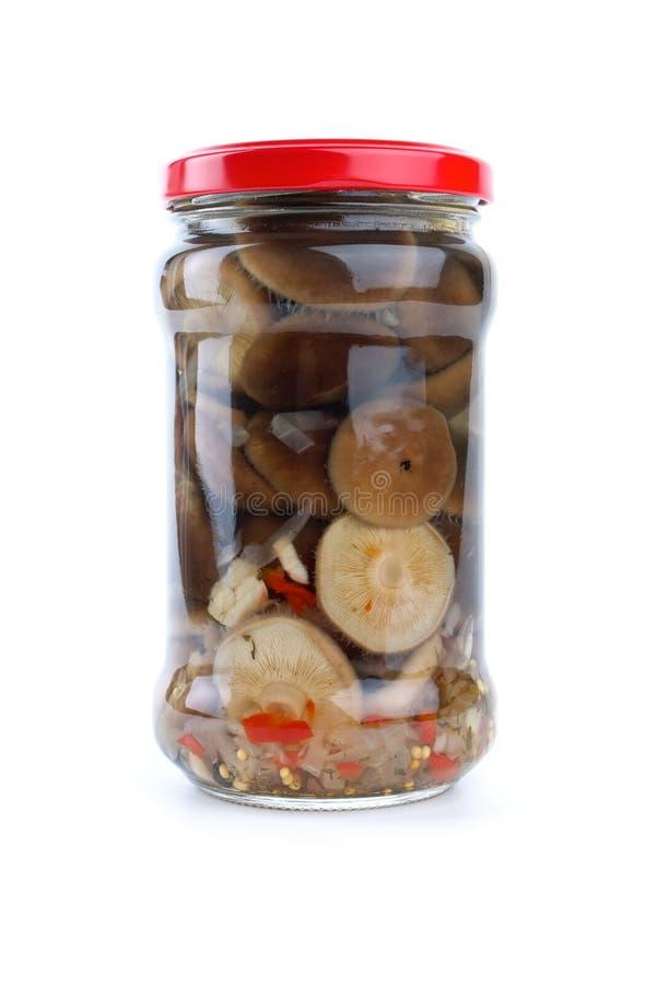 Vaso di vetro con i funghi marinati del latte immagine stock