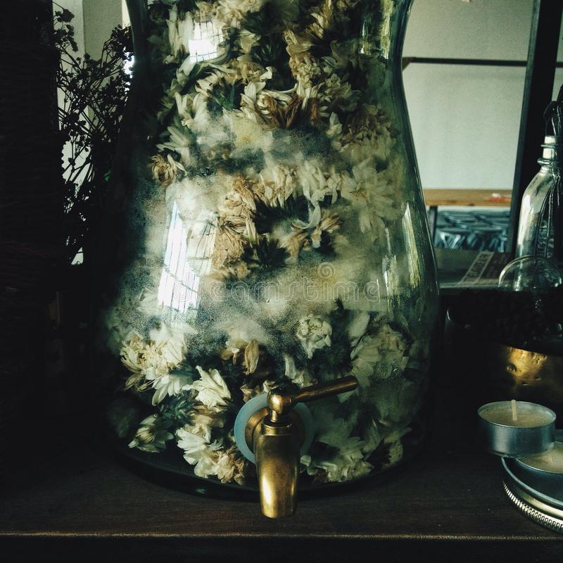 Vaso melancólico fotografia de stock