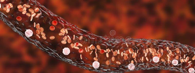 Vaso sanguíneo com glóbulos do fluxo ilustração stock