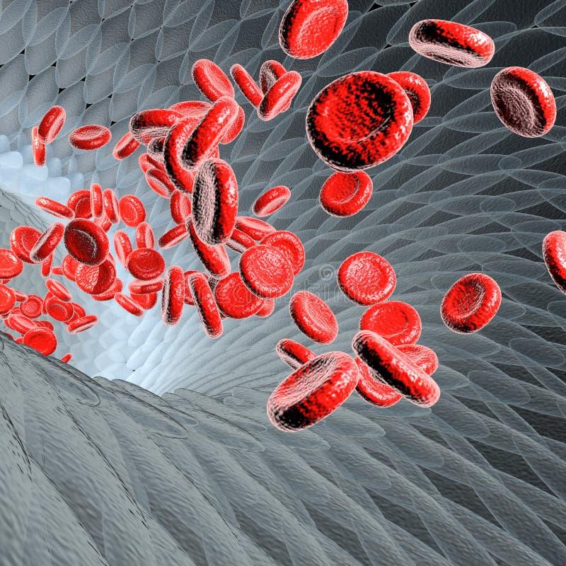 Vaso sanguigno con il concetto scientifico o medico o microbiologico dei globuli di scorrimento, illustrazione della rappresentaz royalty illustrazione gratis