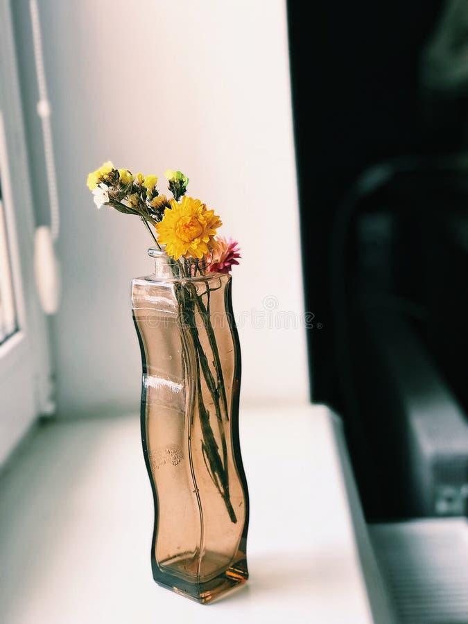 Vaso sul davanzale con i fiori immagine stock libera da diritti