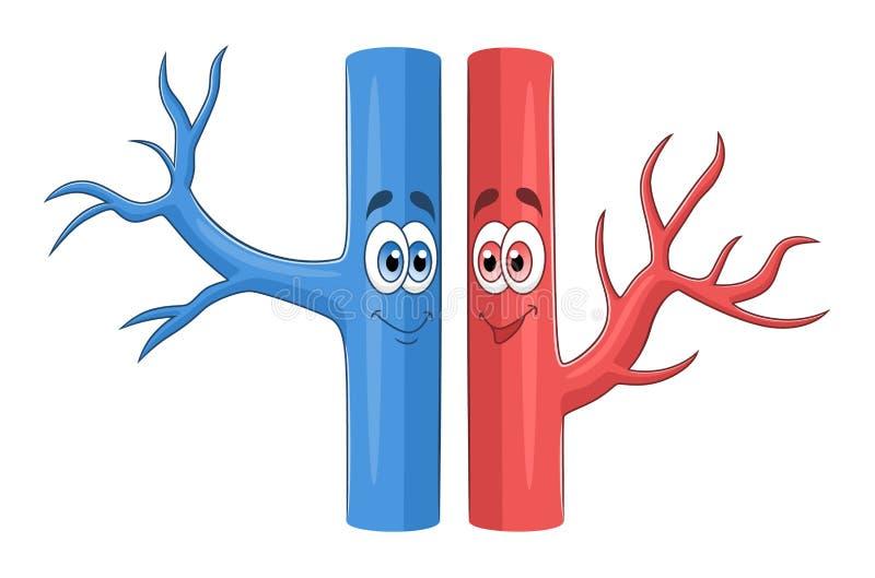 Vasos sanguíneos de la historieta stock de ilustración