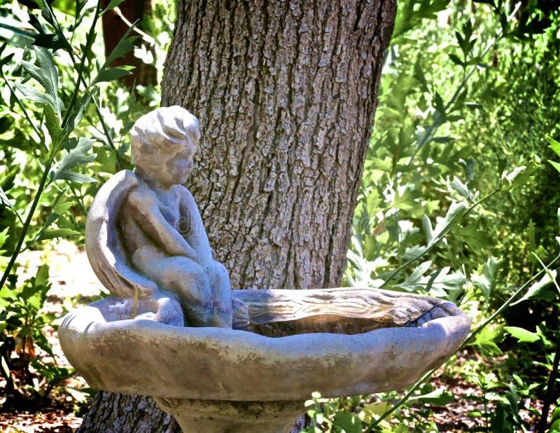 Vasque concrète d'ange photo stock