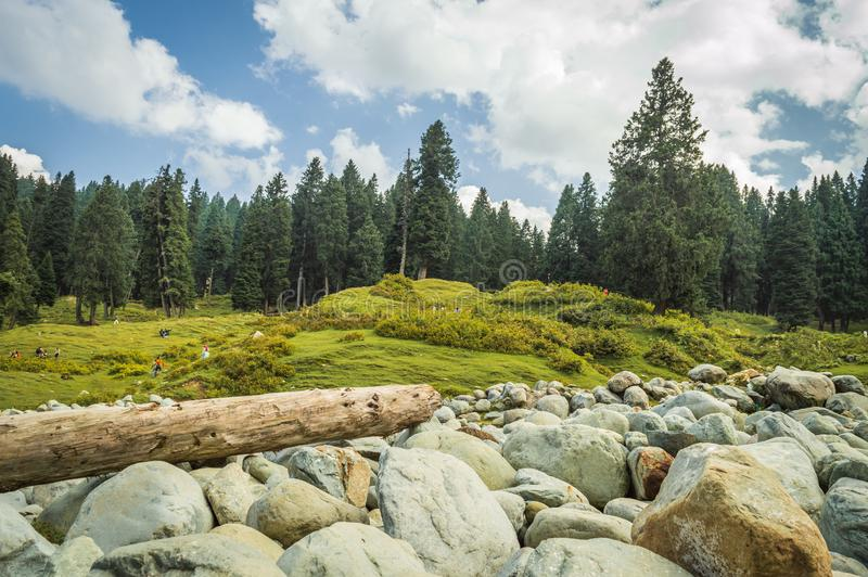 A vast field of round boulders of a river bed in a landscape in Doodhpathri, Kashmir. A log of wood lumbered royalty free stock images