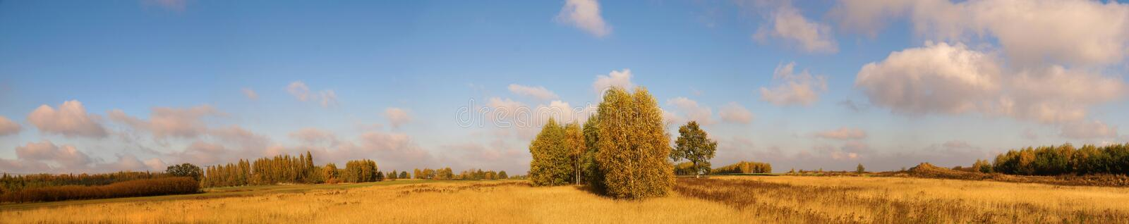 Blighted grass, trees in the colors of autumn. A vast panorama o stock photography