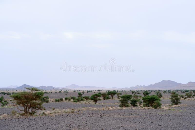 Vasta valle delle pietre nere, montagne di atlante, Marocco fotografia stock
