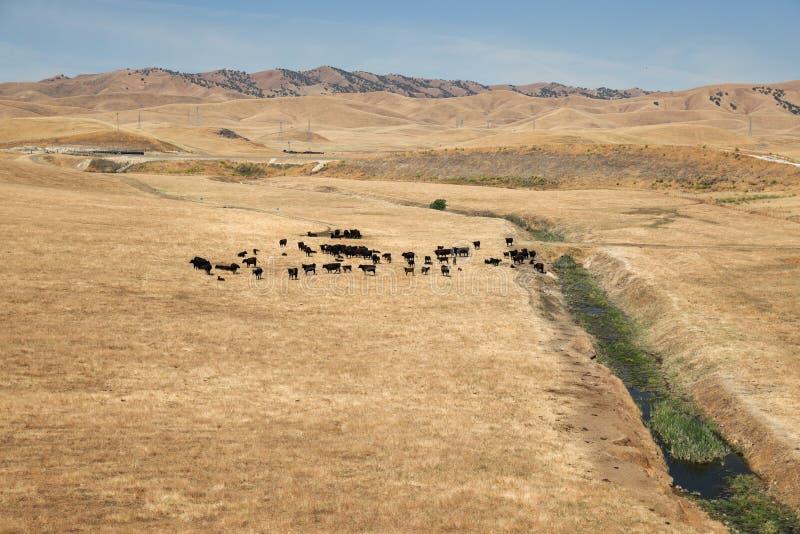 Vaste vue des terres cultivables en Californie centrale photos libres de droits