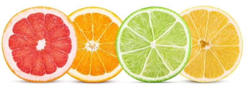 Vastgestelde citrusvruchten, besnoeiing in halve sinaasappel, citroen, kalk, grapefruit stock foto's