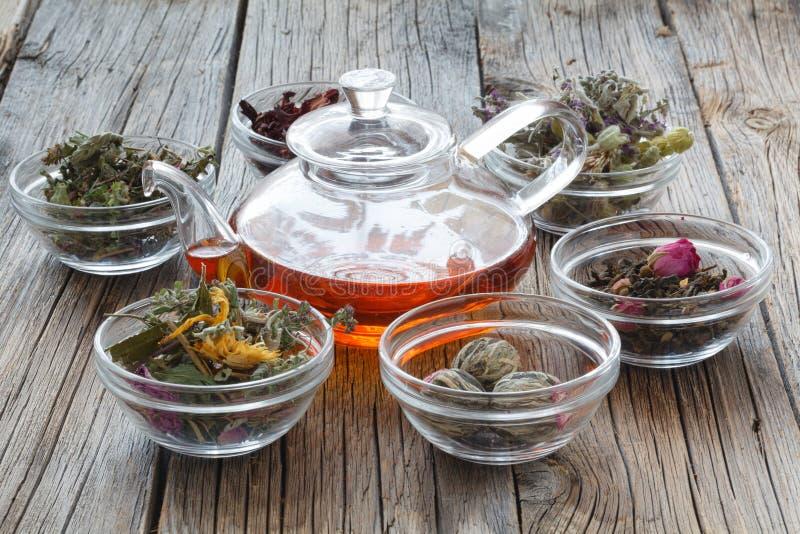 Vastgestelde het helen kruiden Droge kruiden voor gebruik in alternatieve geneeskunde H royalty-vrije stock foto's