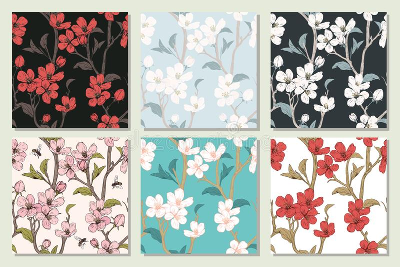 Vastgestelde inzameling met naadloze patronen De bloeiende Bloemen van de Boom De lente bloementextuur Hand getrokken botanische  stock illustratie