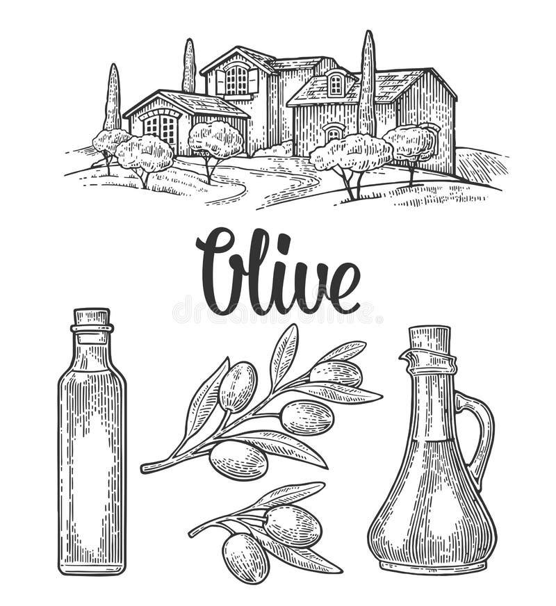 Vastgestelde olijf Flessenglas, tak met bladeren, landelijke landschapsvilla royalty-vrije illustratie