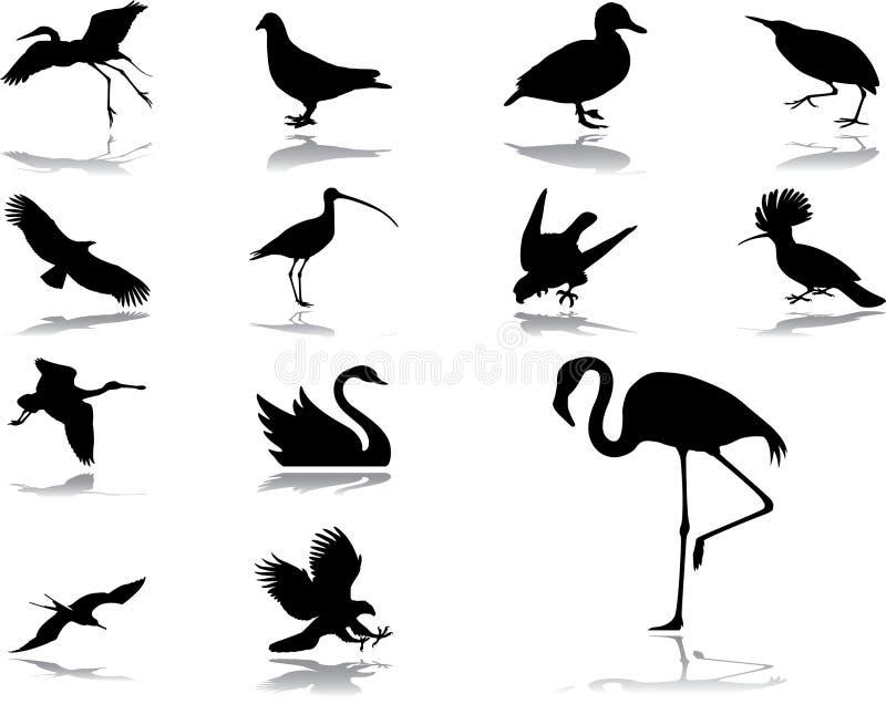 Vastgestelde pictogrammen - 39. Vogels vector illustratie