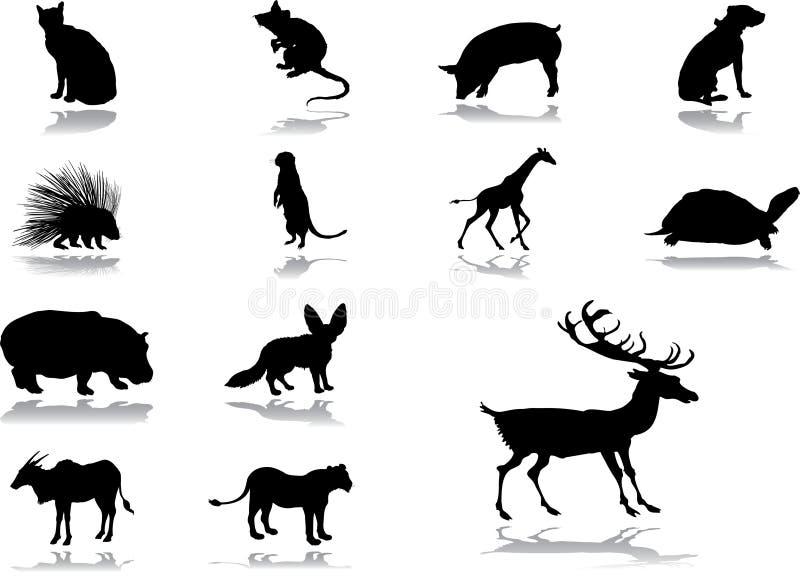 Vastgestelde pictogrammen - 54_. Dieren vector illustratie
