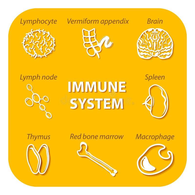 Vastgestelde pictogrammen met schaduw Menselijk Immuunsysteem stock illustratie