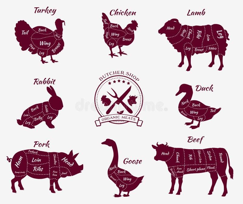 Vastgestelde Schematische Mening van Dieren voor Slager Shop stock illustratie