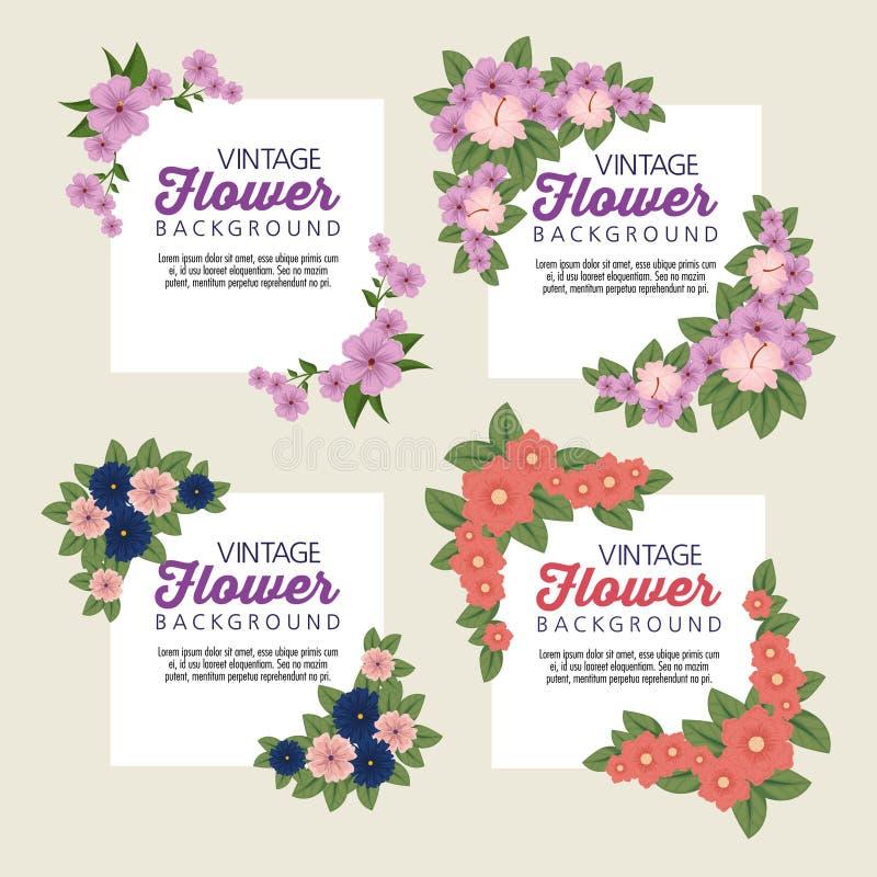 Vastgestelde tropische bloemen met bloemblaadjes en bladeren royalty-vrije illustratie