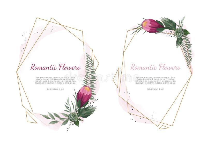 Vastgestelde Vector bloemenontwerpkaart De groet, prentbriefkaarhuwelijk nodigt malplaatje uit Elegant kader met roze en anemoon stock illustratie