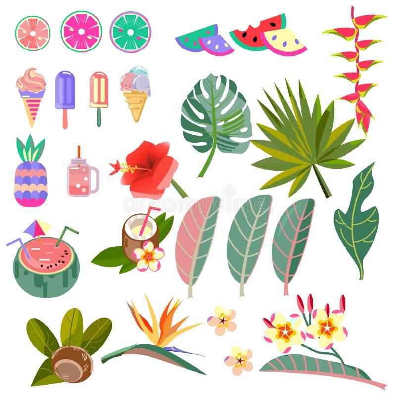 Vastgestelde vectorbeelden van bladeren, bloemen en vruchten Stylization het Caraïbische tuinieren vector illustratie