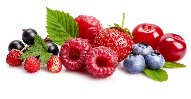 Vastgestelde verse bes Framboos van het mengelings de zomerse fruit royalty-vrije stock afbeeldingen