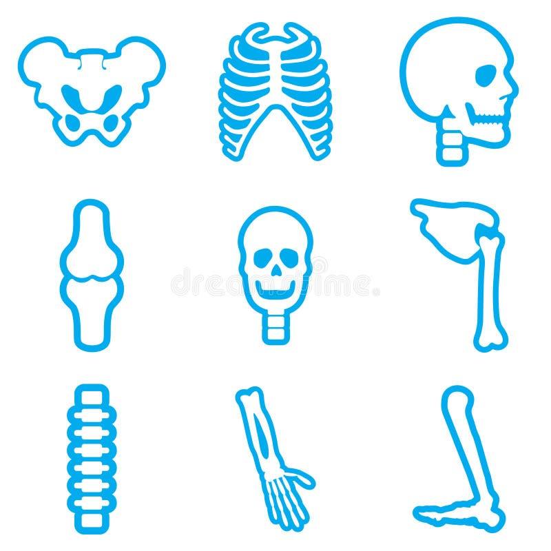 Vastgestelde vlakke pictogrammen met lang schaduw menselijk skelet royalty-vrije stock afbeeldingen