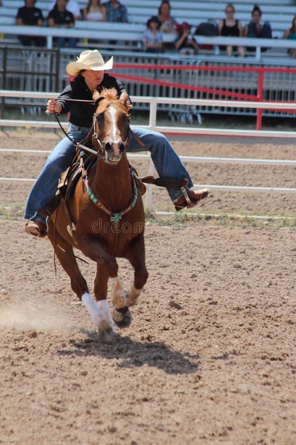 Vat die - Cheyenne Frontier Days Rodeo 2013 rennen royalty-vrije stock foto