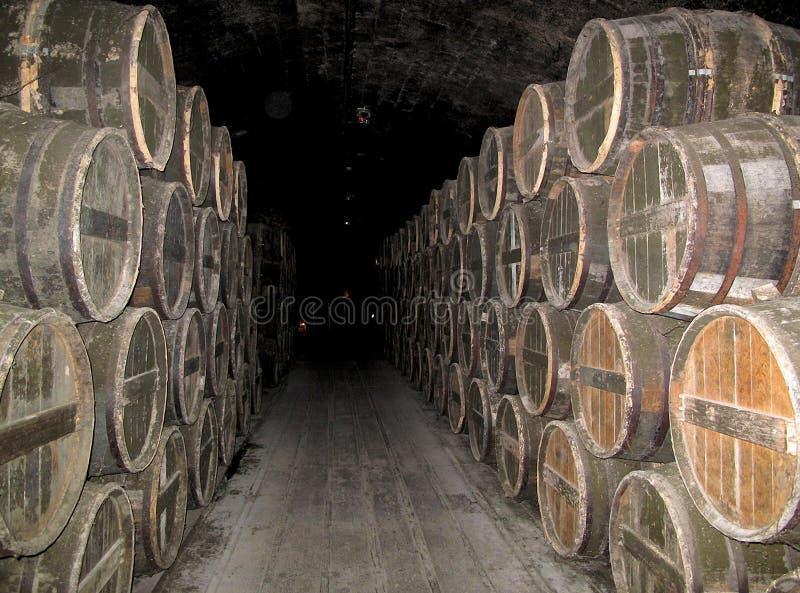 Vaten cognac in de oude kelder stock foto