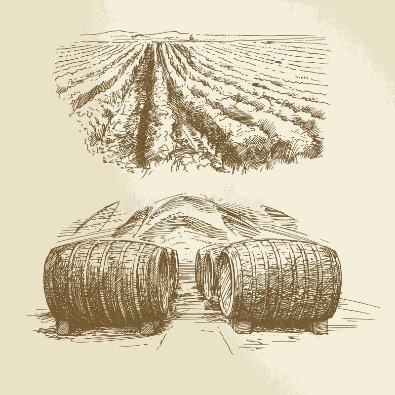 Vaten, wijngaard, oogst, landbouwbedrijf vector illustratie
