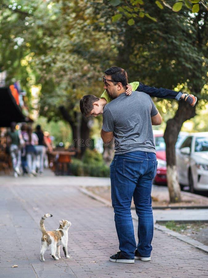 Vater hilft Sohn, mit netter Straßenkatze zu spielen stockfoto