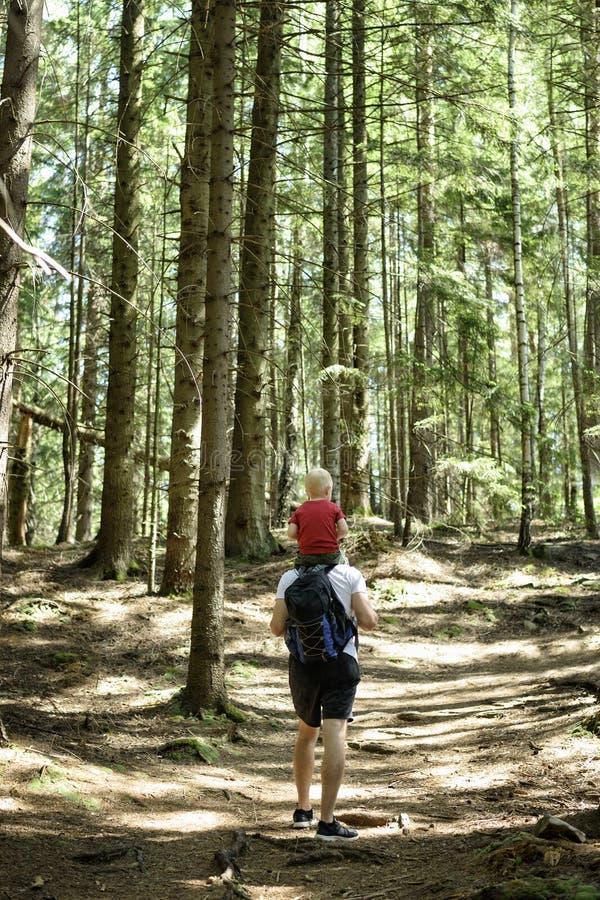 Vater mit dem Rucksack und jungem Sohn auf seinen Schultern gehend auf eine Koniferenwaldhintere Ansicht Tätigkeiten und Tourismu lizenzfreies stockfoto