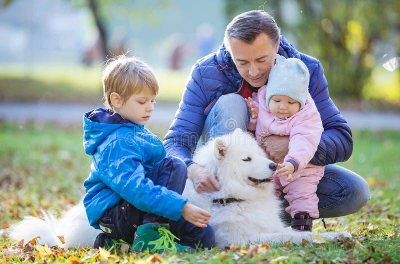 Vater mit Vorschulsohn und Baby daugther, das mit Samoyedhund im Park spielt lizenzfreies stockbild