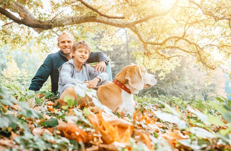 Vater-, Sohn- und Spürhundhund gehen in Herbstpark, warmer Inder summ stockfoto