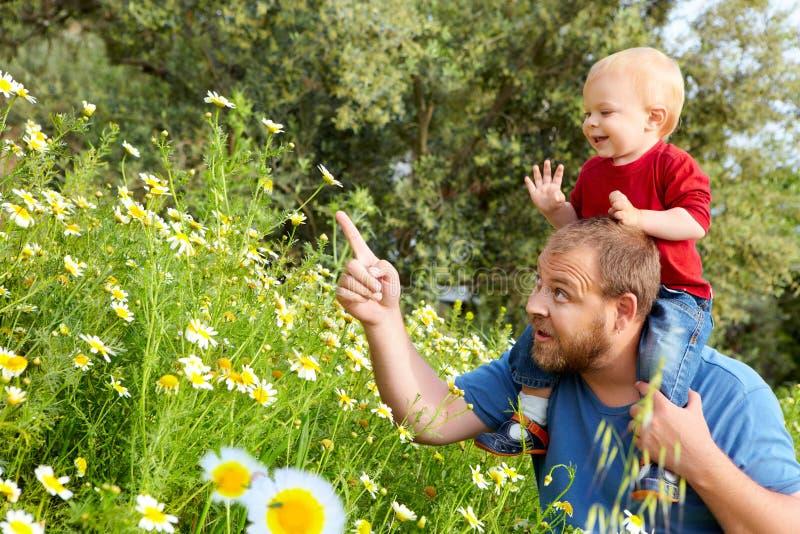 Vater und Sohn in den Blumen stockbild