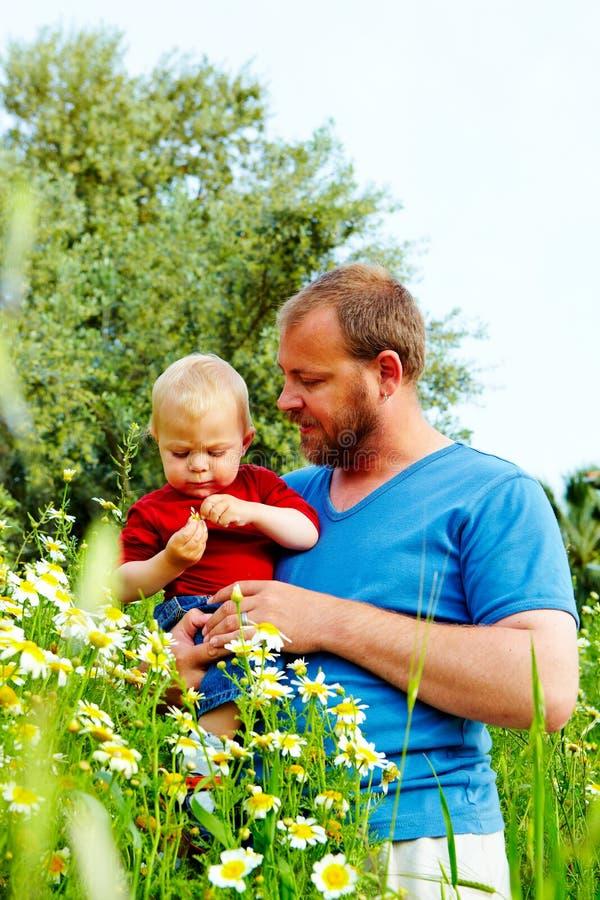 Vater und Sohn in den Blumen lizenzfreie stockfotos