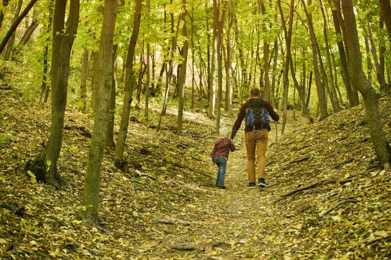 Vater und Sohn, die in die Herbstwaldhintere Ansicht gehen stockbild