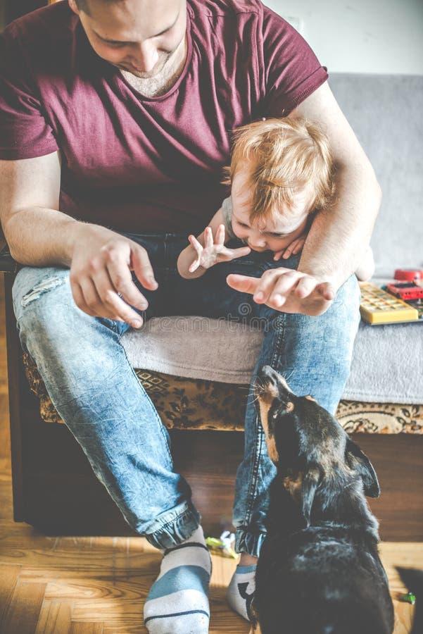 Vater und Sohn mit wenig Hundespielen stockfotos