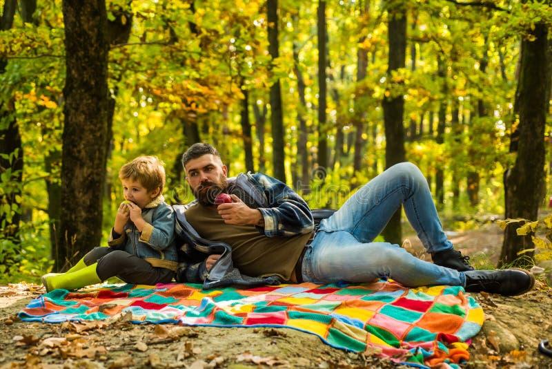 Vater- und Sohnkampieren Gl?cklicher Familien-, Vater- und Babysohn, der auf Herbstweg spielt und lacht Vati und Sohn im Herbst lizenzfreie stockfotografie
