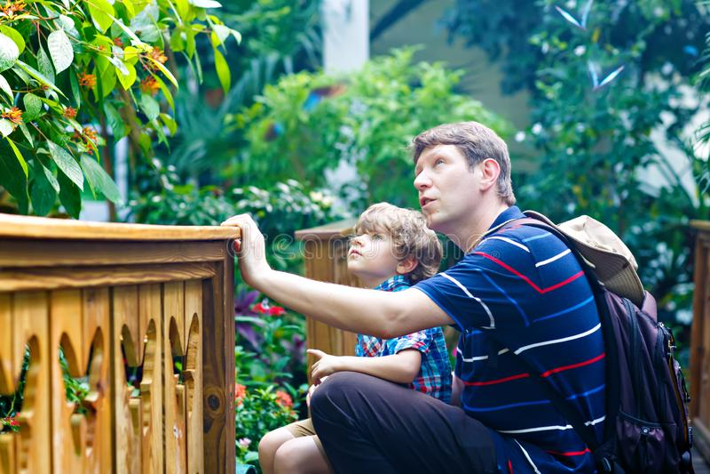 Vater und Vorschule scherzen den Jungen, der Blumen, Anlagen und Schmetterlinge am botanischen Garten entdeckt Familie, junger Ma lizenzfreies stockbild