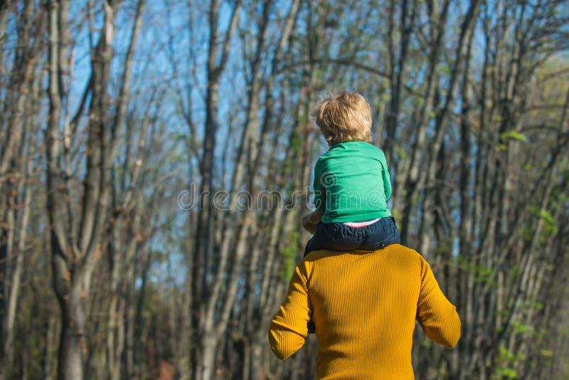 Vatergriff wenig Sohn auf den Schultern, die Kinderdoppelpol im Park geben Doppelpolfahrt Nehmen Sie mich zur Spitze lizenzfreie stockfotografie