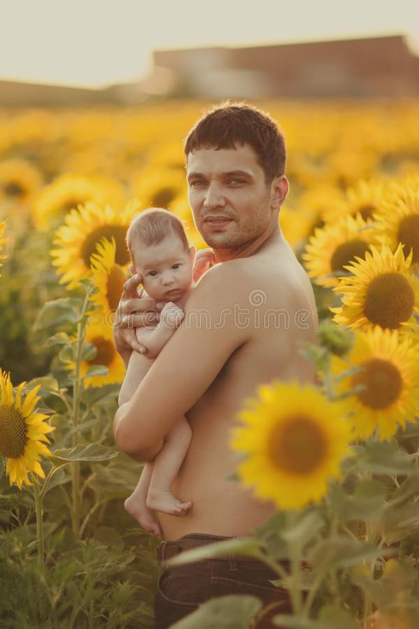 Vati hält das Kind in seinen Armen auf dem Feld von Sonnenblumen lizenzfreie stockfotografie
