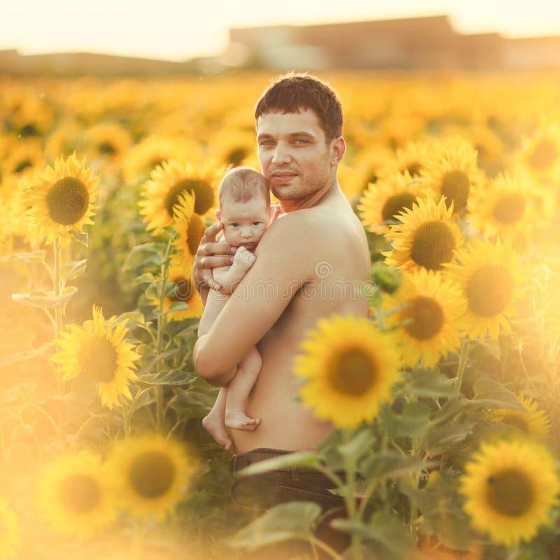 Vati hält das Kind in seinen Armen auf dem Feld von Sonnenblumen stockfotografie