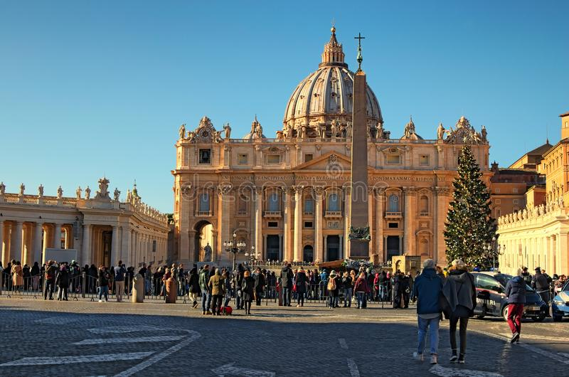 St. Peter`s Basilica, christmas tree near the Vaticano Egyptian Obelisk at St. Peter`s Square. Vatican, Roma, Italy royalty free stock image