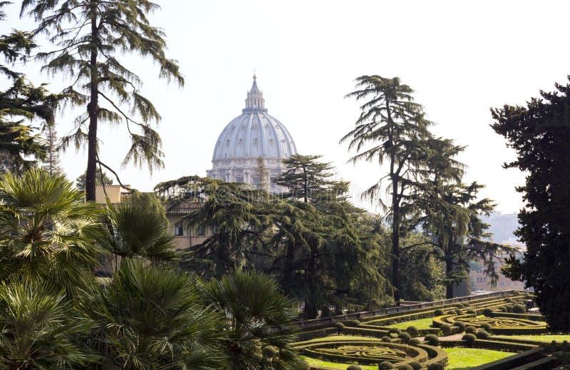 Vatican garden, trees, flower beds, St. Peter`s dome in Rome. Vatican garden, trees, flower beds in the morning garden, St. Peter`s dome in Rome royalty free stock photography