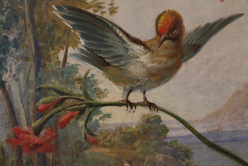 Vatikanstaten museer royaltyfria foton