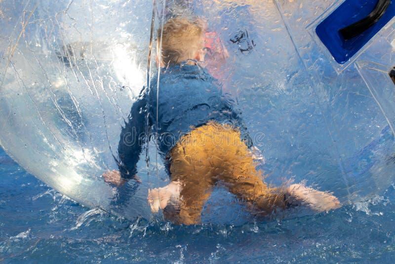 Vatten eller Aquazorbing Barnlek inom den uppblåsbara genomskinliga bollen som svävar i simbassäng Vatten som går eller zorbing royaltyfri fotografi