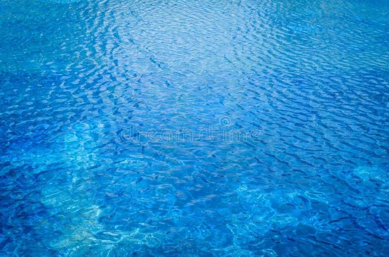 vatten för fotopölsimning fotografering för bildbyråer
