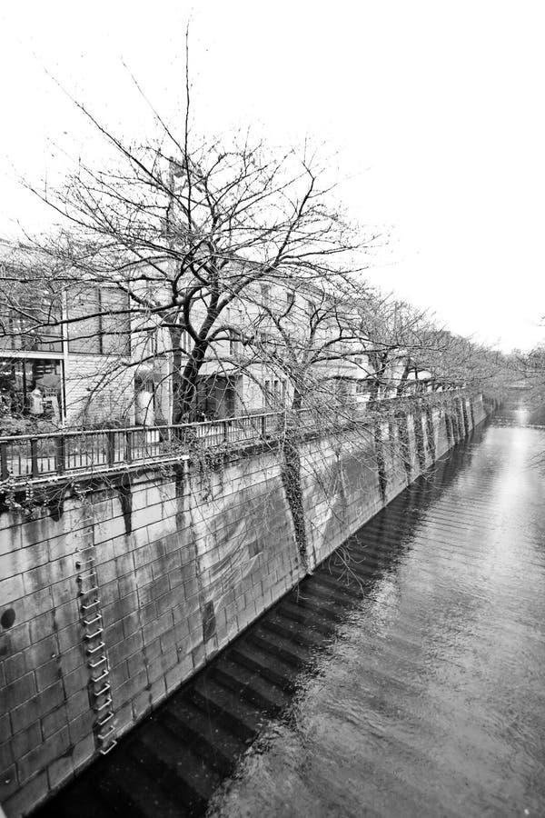 vatten för kanalstadstokyo trees arkivbilder