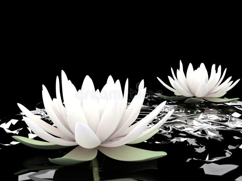 vatten för lotuses 3d vektor illustrationer