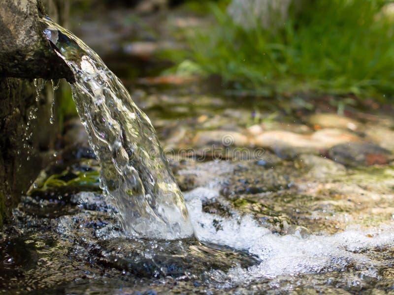 Vatten för naturlig vår på skogen royaltyfria foton