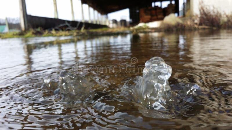 vatten för studia för akvariumbubblafoto arkivbilder