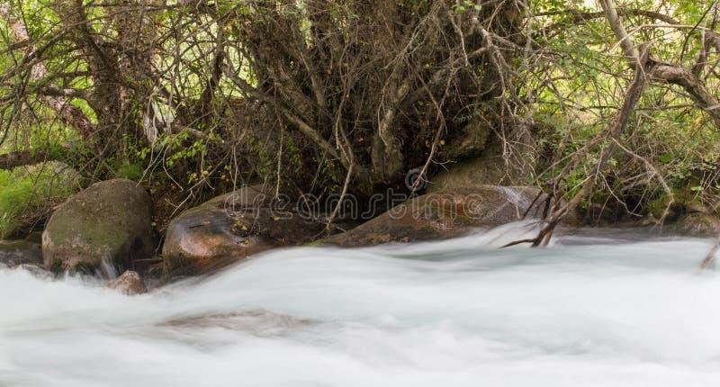 Vatten i bergfloden royaltyfri foto